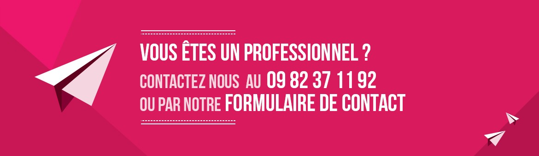 Client Professionnel